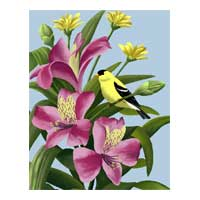 goldfinch and flower art